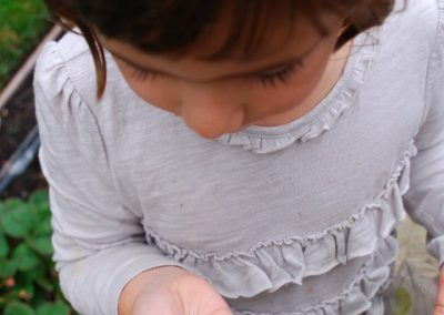 Sonoma Children's Garden I