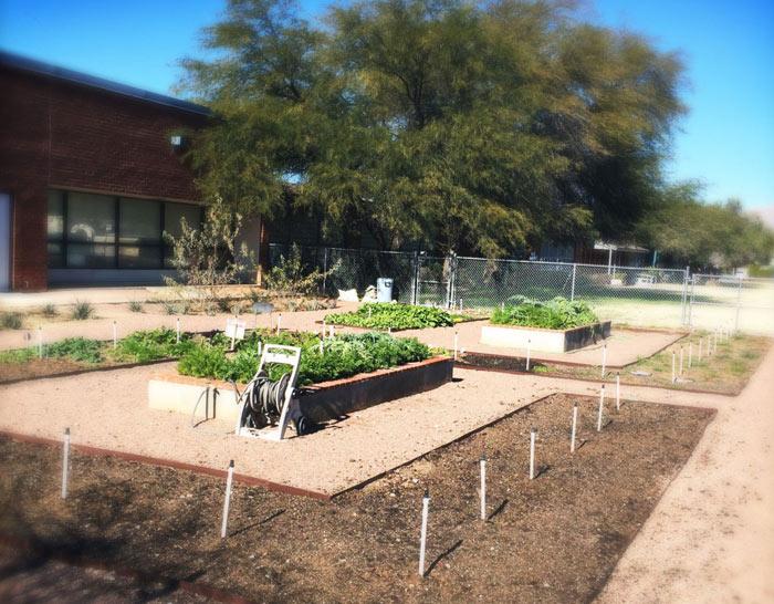 Cragin Elementary School Garden