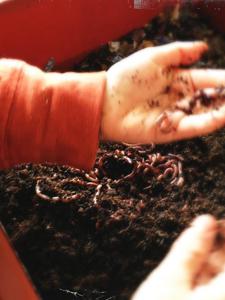 {Compost} Subterranean Farmers