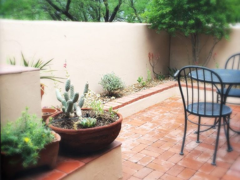 Container Garden Design Property red bark design | container gardening design tucson