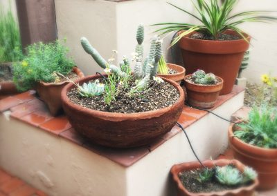 old-fort-lowell-sonoran-pots