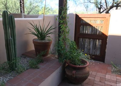 old-fort-lowell-steel-and-saguaros