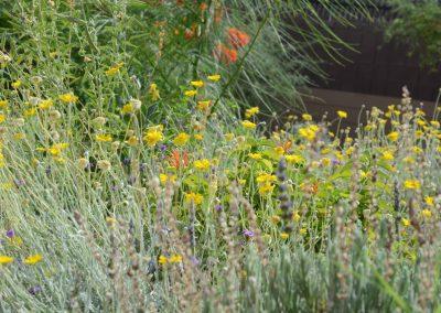 menlo-park-flowers