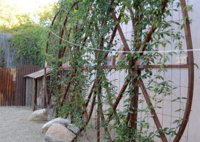barrio-viejo-chicken-run-trellis